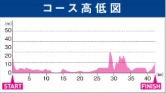 大阪マラソン2019 高低差