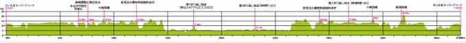 さいたま国際マラソン2019高低差