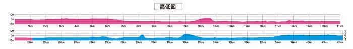 大阪国際女子マラソンの高低差